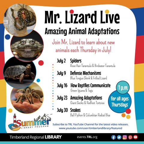 Mr. Lizard Live - Amazing Animal Adaptations